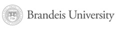 Brandeis University - International Business School